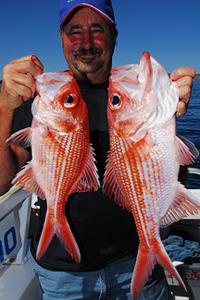 bight redfish nannygai fishing south australia peter crawford