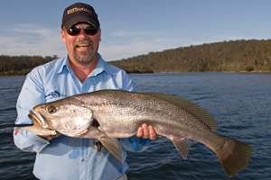 mulloway jewfish steve starling squidgie soft plastics lures