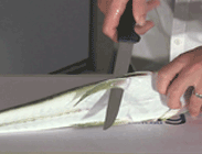 how to fillet flathead