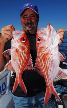 Bight Redfish Get Fishing