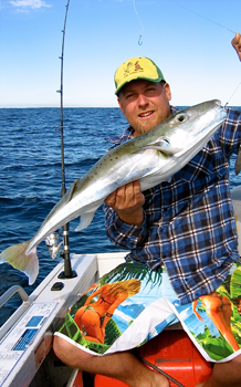 silver toadfish get fishing