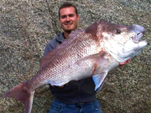 monster snapper caught rock fishing western australia albany