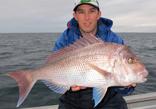 pink snapper fishing perth western australia