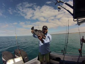 rankin cod shark bay fishing wa
