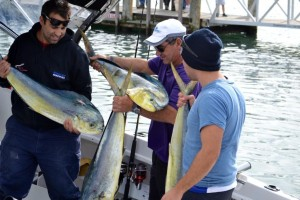 Portland mahi mahi fishing vic