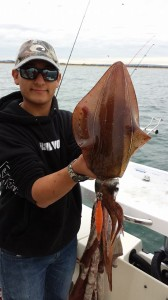 squid fishing port phillip bay vic