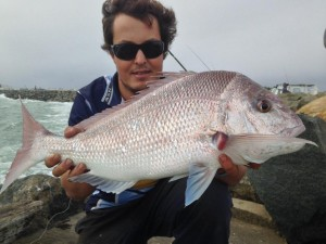 North Mole snapper fishing perth wa