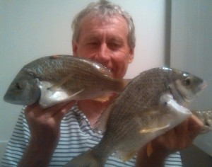 yellowfin bream gold coast fishing
