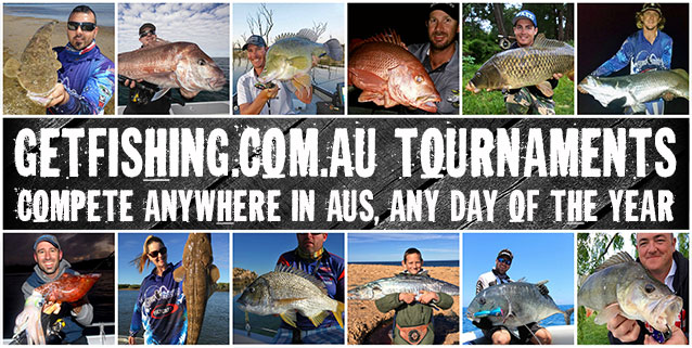 Get Fishing tournament banner for website