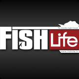 fishlife magazine web banner