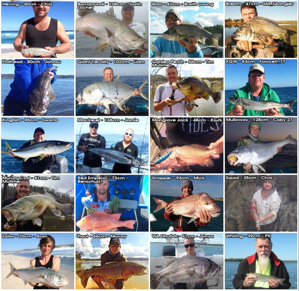 online fishing tournament Winners Aug 2014