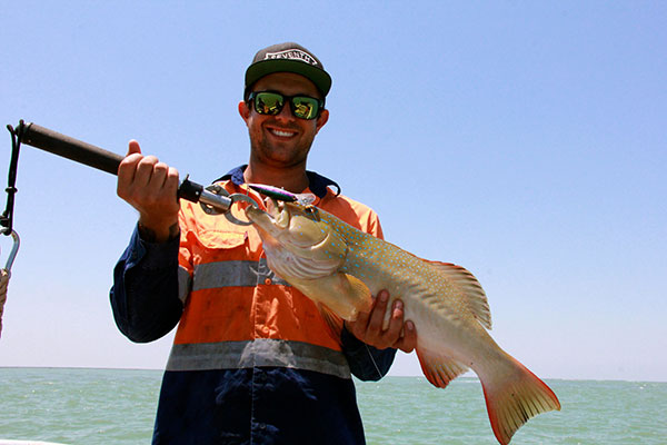 coral trout caught in darwin