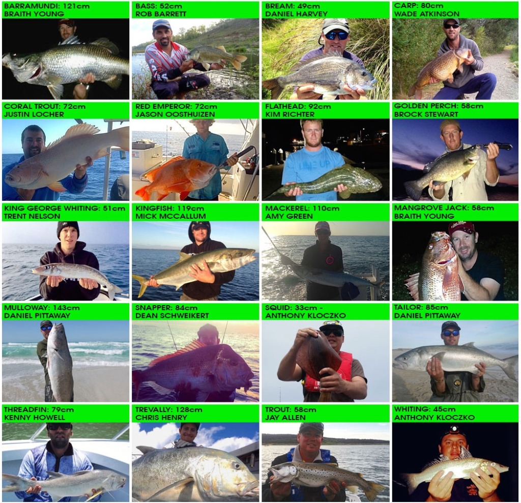 australian online fishing tournament winners
