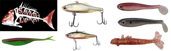 shads lures february fishing comp prize
