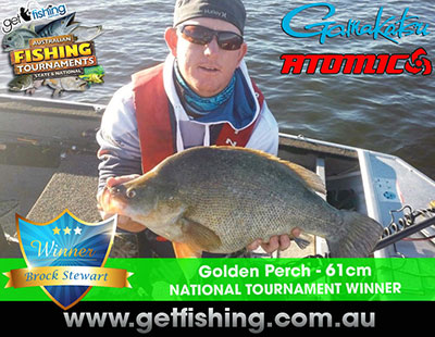 golden_silver_redfin-perch-brock-stewart-61cm-(1)