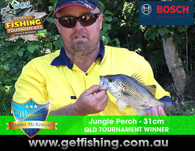 jungle-perch-damo-mckenzie-31cm