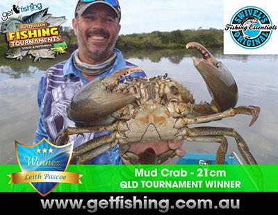 mud-crab-leith-pascoe-21cm