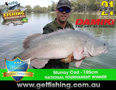 murray-cod-daniel-pittaway-105cm-(1)