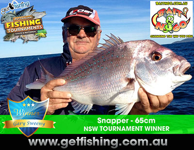 snapper-gary-sweeny-65cm