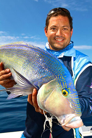 how to catch queen snapper blue morwong in australia