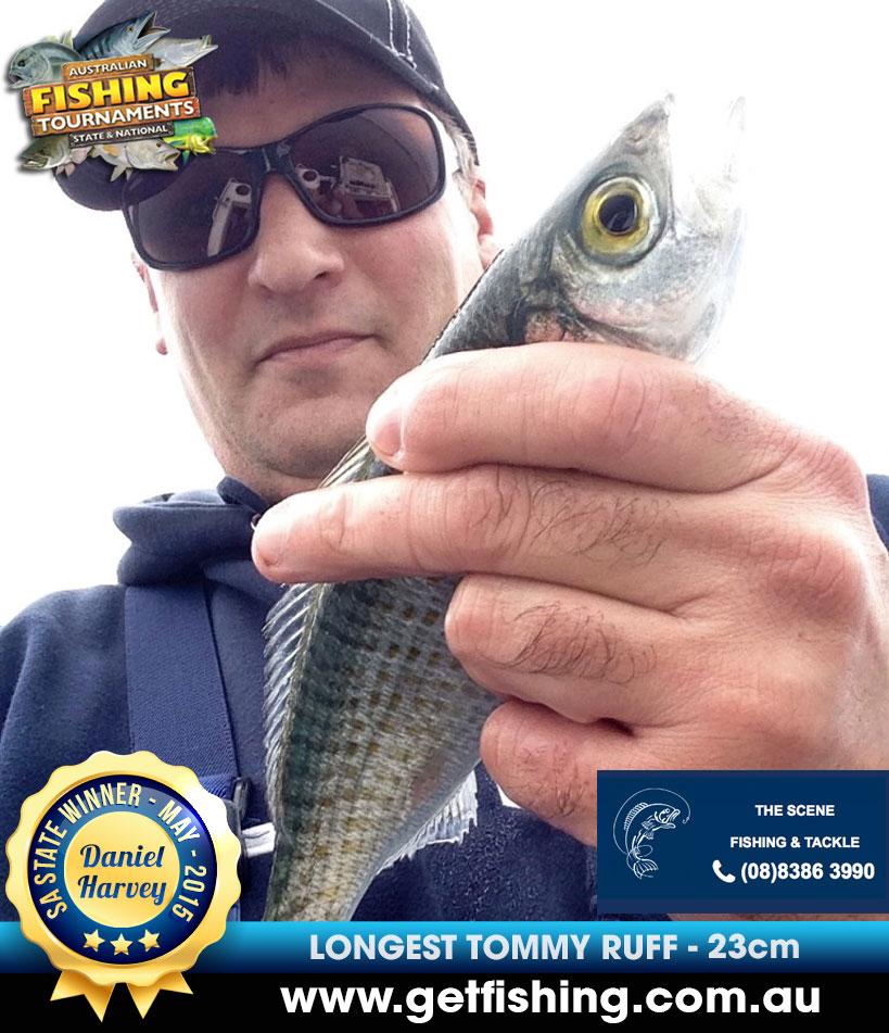 herring_tommy-ruff-daniel-harvey-23cm