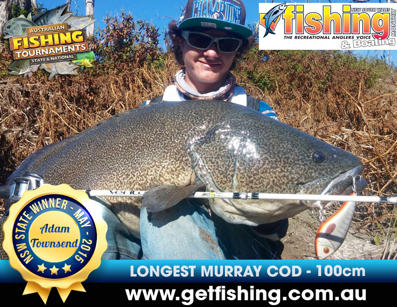 murray-cod-adam-townsend-100cm-(1)