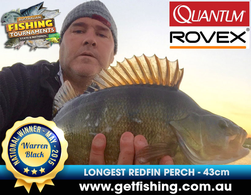 redfin-perch-warren-black-43cm