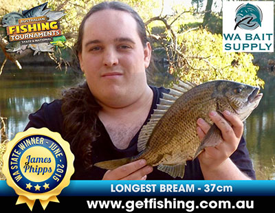 bream_james-phipps_37cm-(1)