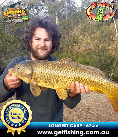 carp_cohen-smith_67cm-(1)