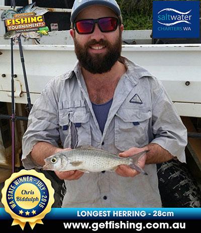 herring_chris-biddulph_28cm