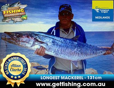mackerel_allan-clarke_131cm