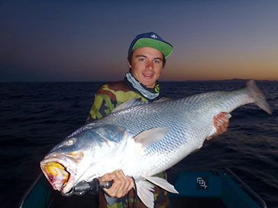black jewfish qld coby pascoe
