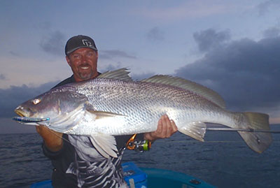 black jewfish qld liam pascoe