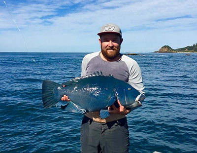 blue groper fishing nsw_hari corliss