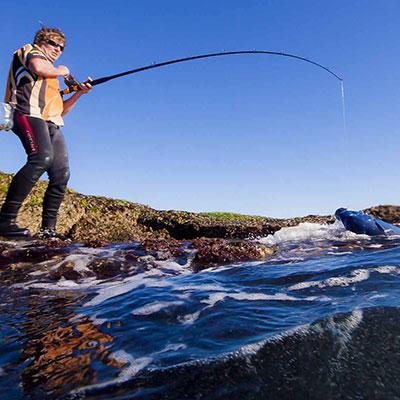 blue groper rock fishing nsw_darrin clarke