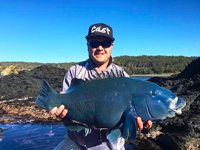 eastern blue groper fishing nsw_layton brant batemans bay