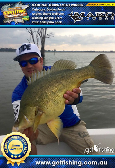 golden-perch_shane-wolhuter_57cm