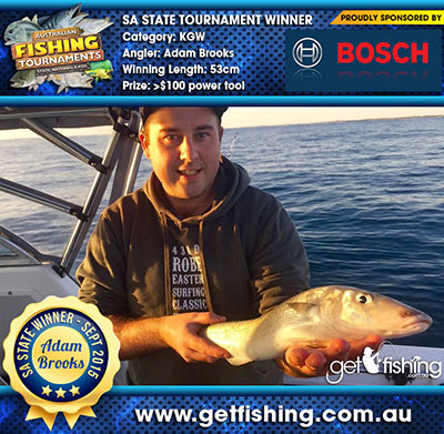 king-george-whiting_adam-brooks_53cm