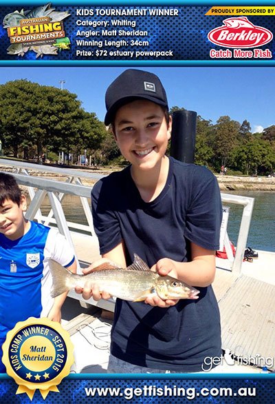 whiting_matt-sheridan_34cm