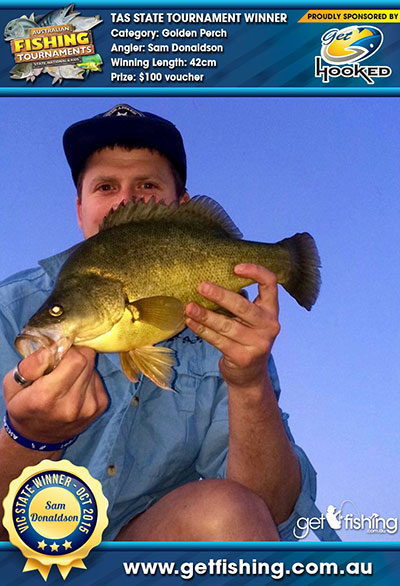 golden-perch_sam-donaldson_42cm