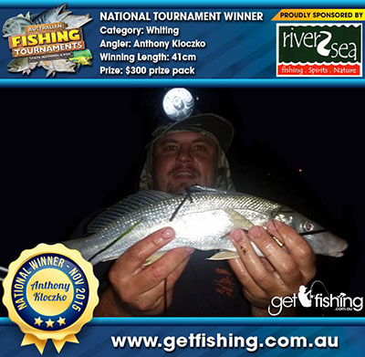 whiting_anthony-kloczko_41cm
