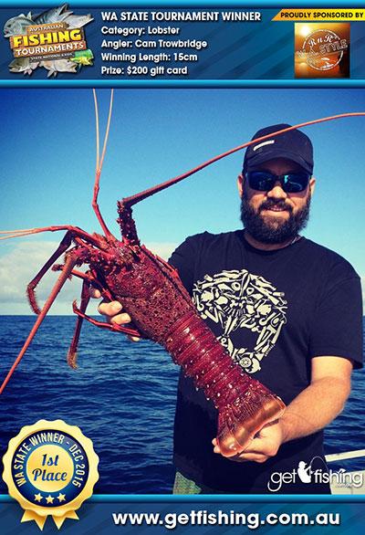 lobster_cam-trowbridge_15cm