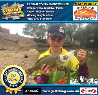 golden_silver-perch_michael-stanley_41cm