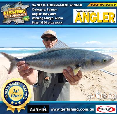 salmon_tony-zintz_60cm