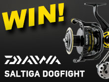 WIN Daiwa Saltiga Dogfight giveaway