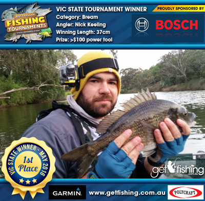 bream_nick-keeling_37cm
