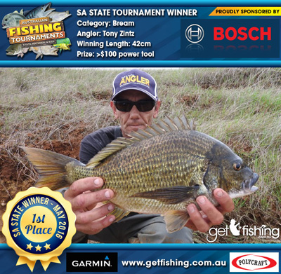 bream_tony-zintz_42cm