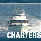 jazz charters perth fishing competition tournament banner