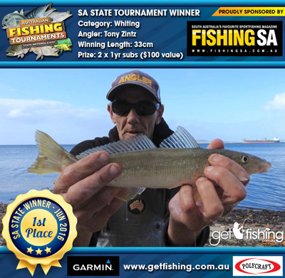 whiting_tony-zintz_33cm