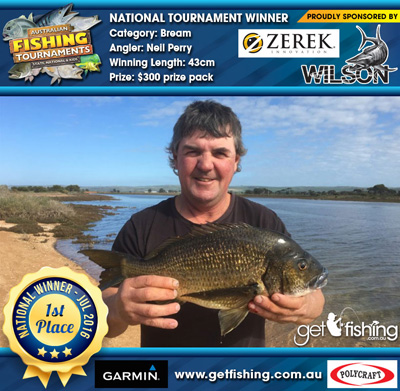 bream_neil-perry_43cm